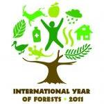 Forests are a significant natural heritage asset for tourism, it seems only logical to conserve them